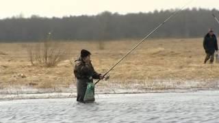 весенний запрет на рыбалку в ярославской области