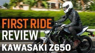 4. Kawasaki Z650 First Ride Review at RevZilla.com