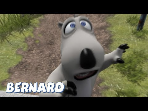 Bernard Bear | The Medallion AND MORE | 30 min Compilation | Cartoons for Children