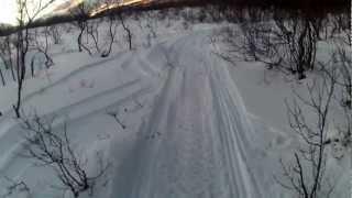 2. 2006 ski doo mxz renegade 600 H.O. Sdi