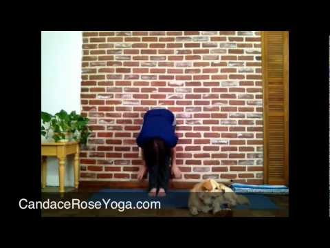 5 CR Yoga Front Bend Vinyasa