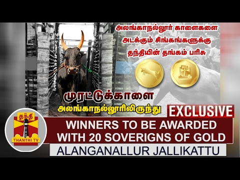 Alanganallur Jallikattu Winners to be awarded with 20 sovereigns of gold coins by Thanthi TV