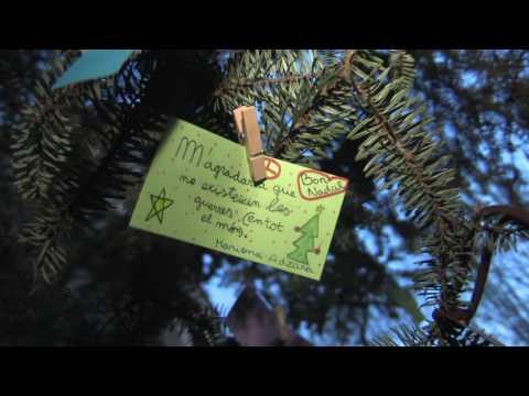 Encesa de l'arbre de Nadal de Valldoreix 2016