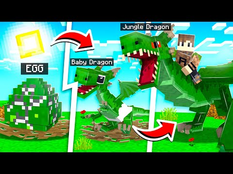 HOW TO TAME A PET JUNGLE DRAGON IN MINECRAFT! (dangerous) | Wildlife: Zoo Pt.7