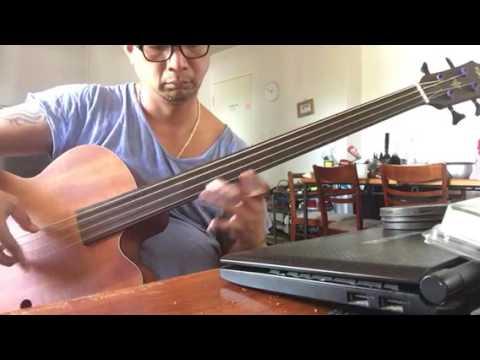 Aria acoustic bass with Thomastik Infeld nylon core strings