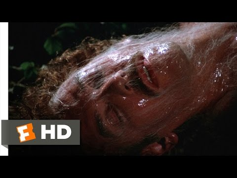 Invasion of the Body Snatchers (7/12) Movie CLIP - Escaping the Pod People (1978) HD