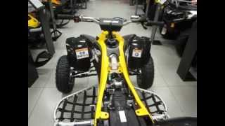 2. Обзор Can Am DS 450 XMX