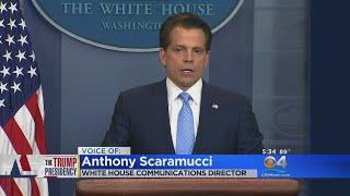 """""""I know I'm in a cesspool called Washington,"""" Anthony Scaramucci said."""