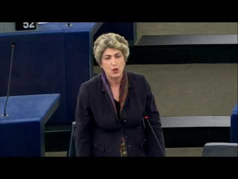 Maria João Rodrigues debate sobre as conclusões da reunião do Conselho Europeu de 29 abril 2017