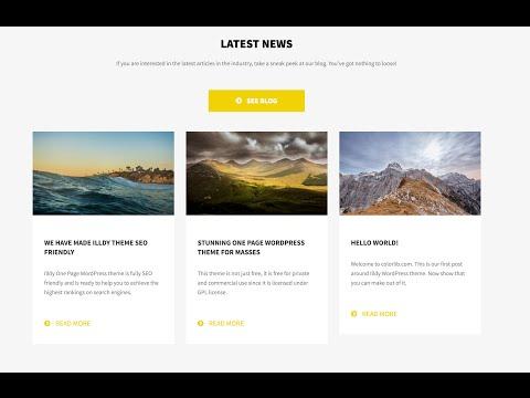 How yo setup blog for Illdy WordPress theme