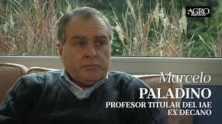 Marcelo Paladino - Profesor Titular del IAE - Ex Decano