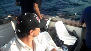 Video Pescaria Pargos Barco Micas MP3, 3GP, MP4, WEBM, AVI, FLV Desember 2017