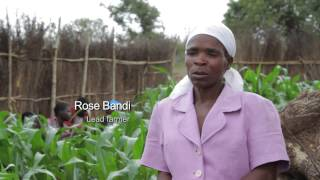 Building resilience of small farmers in Southern Africa