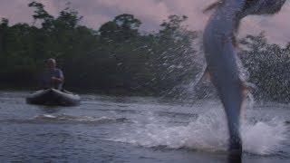 A Pesca do Gigante
