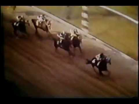 preakness stakes - The actual footage of Secretariat's incredible Preakness Stakes victory during the second race of the 1973 Triple Crown.