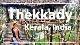 Thekkady India  city photos gallery : Kerala, India Thekkady: Monkeys, Elephants, Shopping & Treehouse!