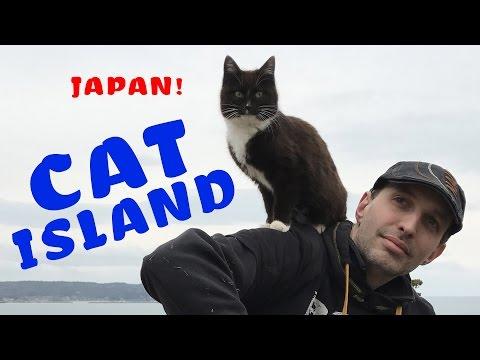 Visiting Japan s Cat Island