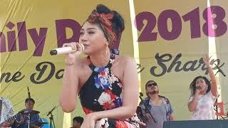 Jaran Goyang - Iva Lola