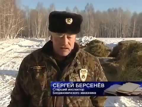 Заказники. Свердловская область. Места охоты браконьеров