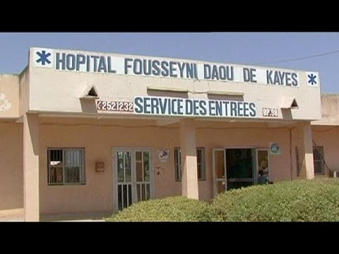 dies - A two-year-old girl who was Mali's first case of Ebola has died in hospital. She had travelled by bus with her grandmother from Guinea via Mali's capital to the western town of Kayes,. The...