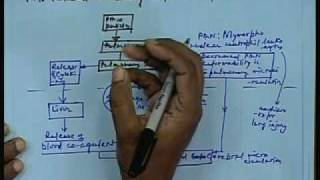 Lec-30 Health Effects Of Air Pollutants Part-2