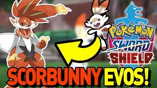 IS SCORBUNNY FAIRY TYPE?! NEW RUMORS! Scorbunny Evolution in Pokemon Sword and Shield Discussion by aDrive