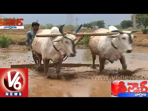 Telangana people are happy with rains in the state  Teenmaar News