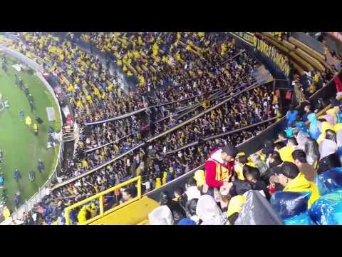 Libres y Lokos alentando en copa libertadores - Libres y Lokos - Tigres
