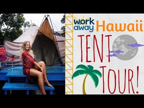 I live in a tent in Hawaii?! // casual tent tour // pt. 2 of 2