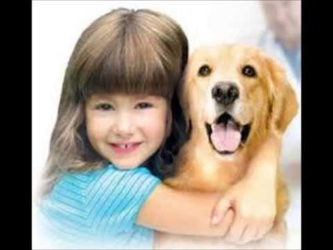 amore puro tra cani e bambini