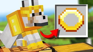 We ADDED 10 New Pet Updates to Minecraft (Comments to Crafting)