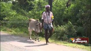 Rowthram Pazhagu (29/12/2012) - Episode 44 - Part 2