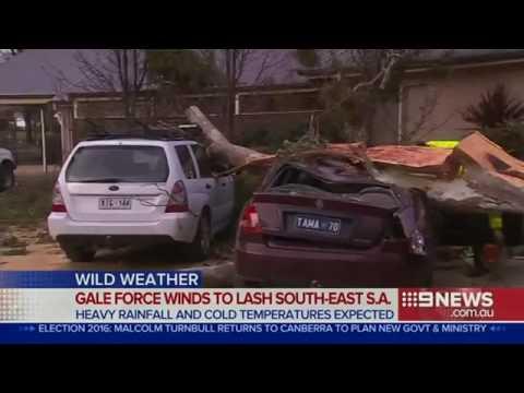 بالفيديو.. إعصار قوي يضرب أستراليا ويتسبب في سقوط الأشجار وتحطيم السيارات