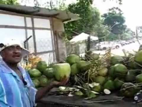 世界最強剖開椰子的方法大PK!太猛了~