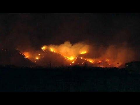 Mallorca: Waldbrand zerstört mehr als 75 Hektar Lan ...