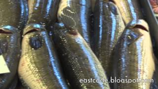 Snakehead Fish And Catfish Stall  Bangkok Market  Thailand