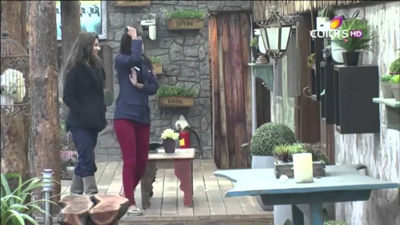 Bigg Boss 8, Day 73 :Diandra Kisses Gautam As Shocked Housemates Watch