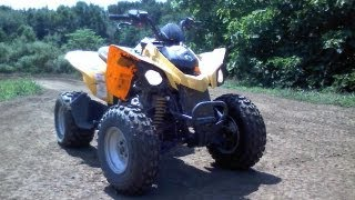 2. Can Am DS 250 Overview
