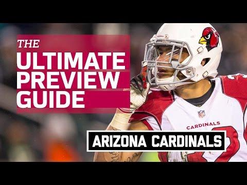 Arizona Cardinals 2016 Team Preview (Infographic) | NFL