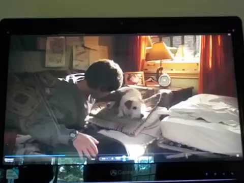 Hotel for Dogs Deleted Scene# 3