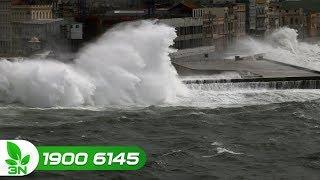 Nông nghiệp | Siêu bão Mangkhut vào Vịnh Bắc Bộ sẽ gây gió giật cấp 14 – 15