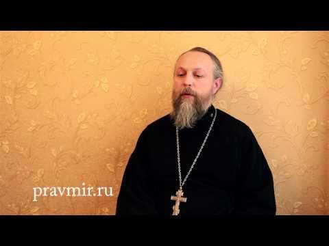 Священник Дмитрий Туркин о посте для детей (видео)