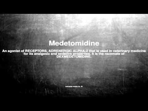 Medical vocabulary: What does Medetomidine mean