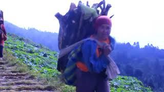 Gunung Sumbing Indonesia