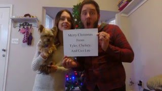 Christmas Timelapse 2015 (Pregnancy Announcement)