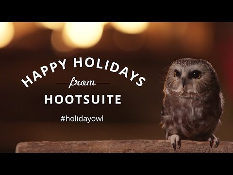 Hootsuite unveils 40 minute holiday video of an owl in front of a fire video