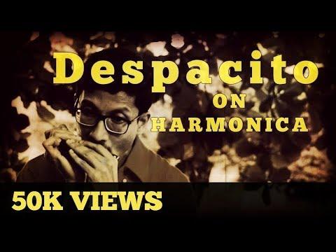 Despacito | Harmonica Cover | Arindam Sen