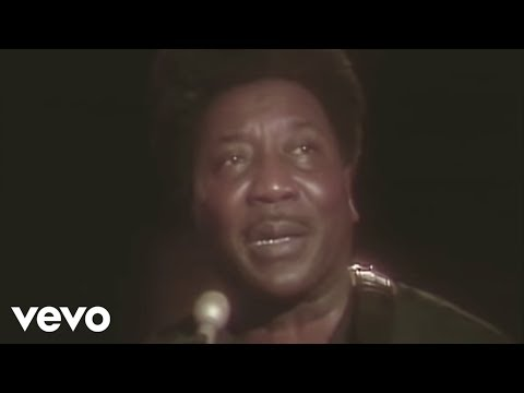 Muddy Waters - Hoochie Coochie Man (Live)