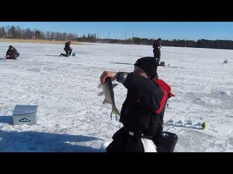 Зимняя ловля леща. Открытие сезона