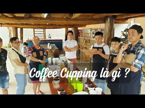 Cupping (part 1) |Thú vị lần đầu tiên làm bài test vị cafe tại Azzan Coffee - Thời lượng: 31 phút.